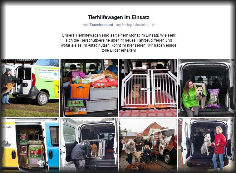 DTschBund_Tierheimauto